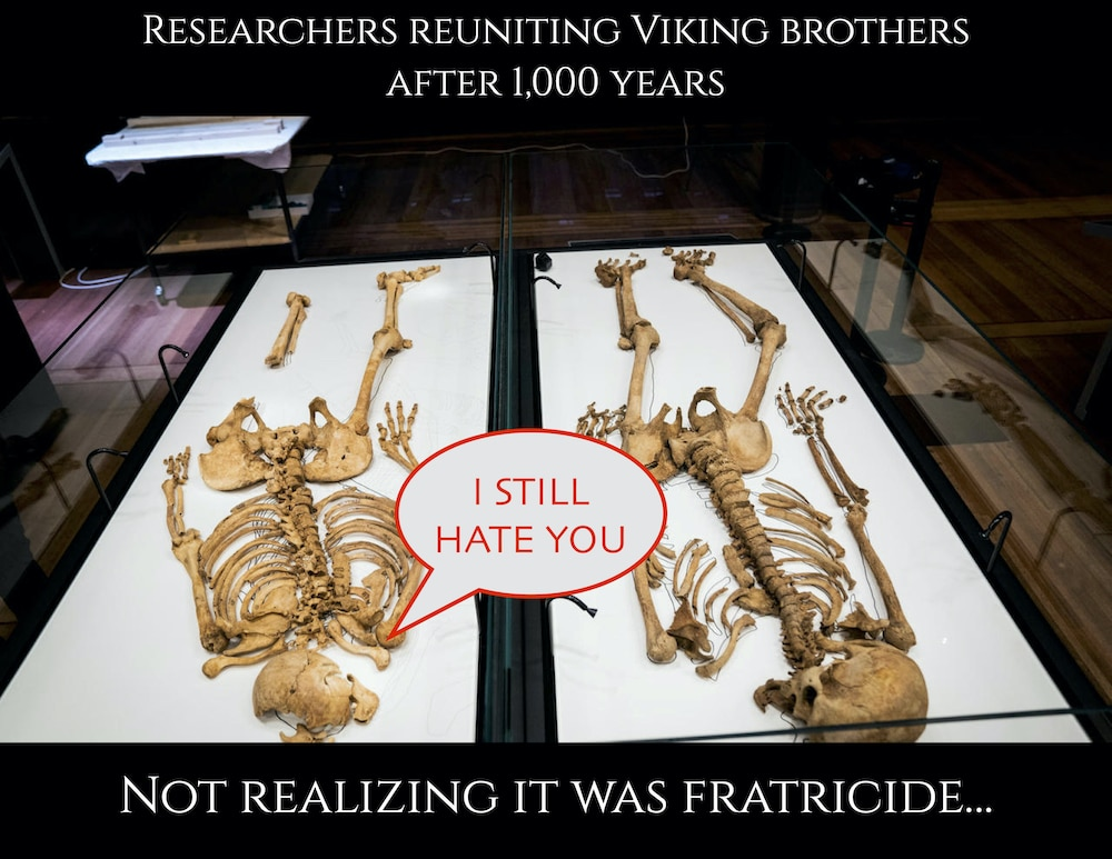 Viking relatives reunited after 1000 years